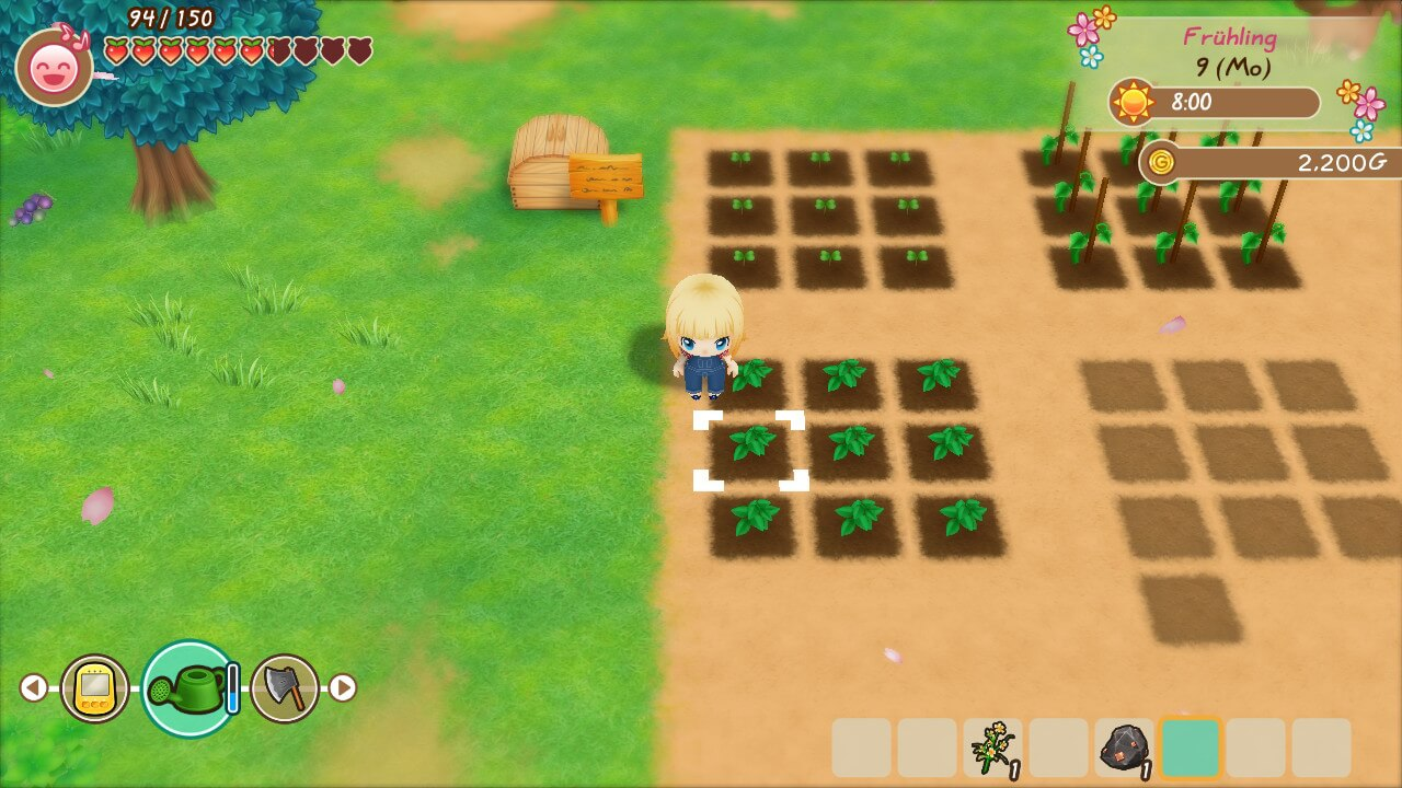 Story of Seasons Friends of Mineral Town (FOMT) - Tipps & Tricks